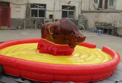 bull riding machine for backyard
